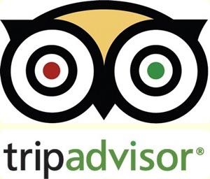 Library Hotel Collection – The Secret to TripAdvisor Success
